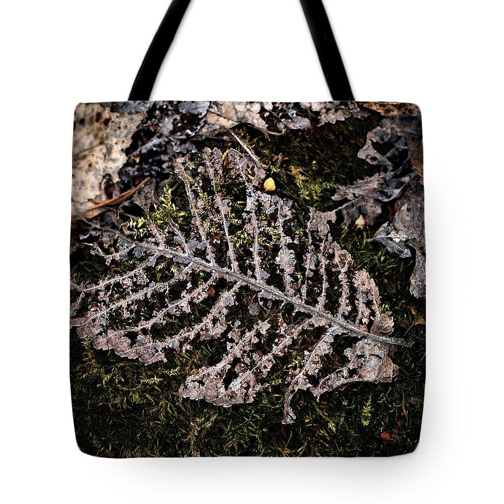 Lehtokukka Tote Bag featuring the photograph Vanishing by Jouko Lehto