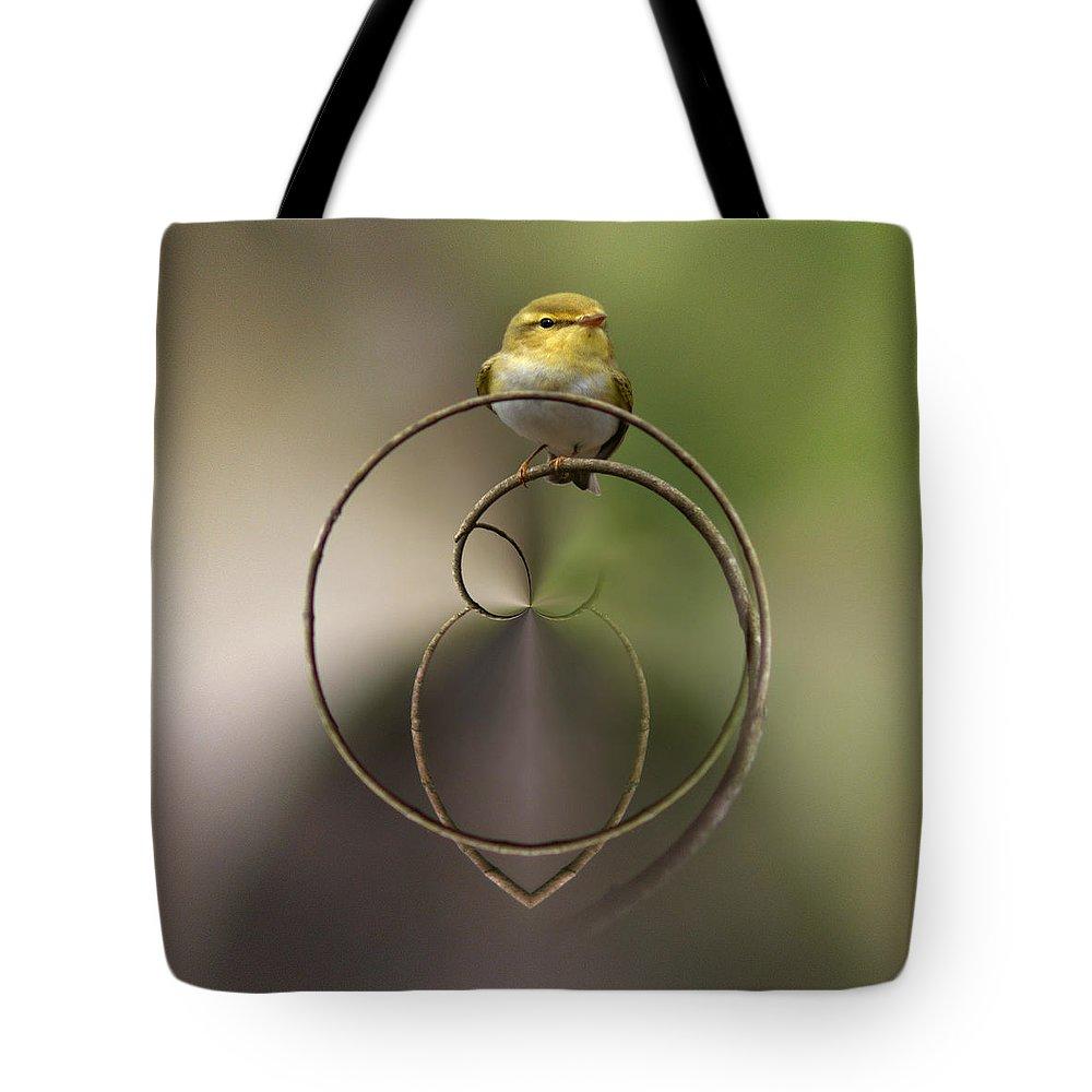 Lehtokukka Tote Bag featuring the photograph Wood Warbler by Jouko Lehto