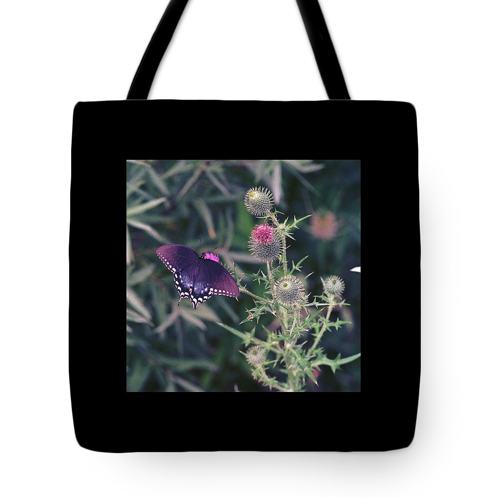 Butterfly Tote Bag featuring the photograph 060207-13 by Mike Davis