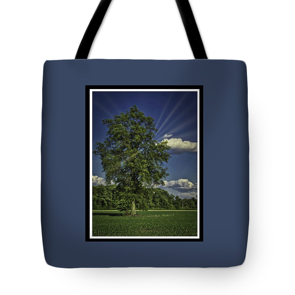 Trees Tote Bag featuring the photograph 060318-25 by Mike Davis