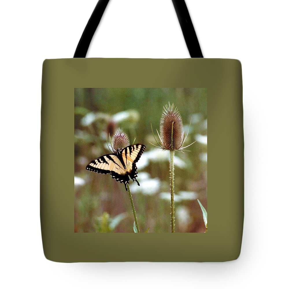 Butterfly Tote Bag featuring the photograph 070406-84 by Mike Davis