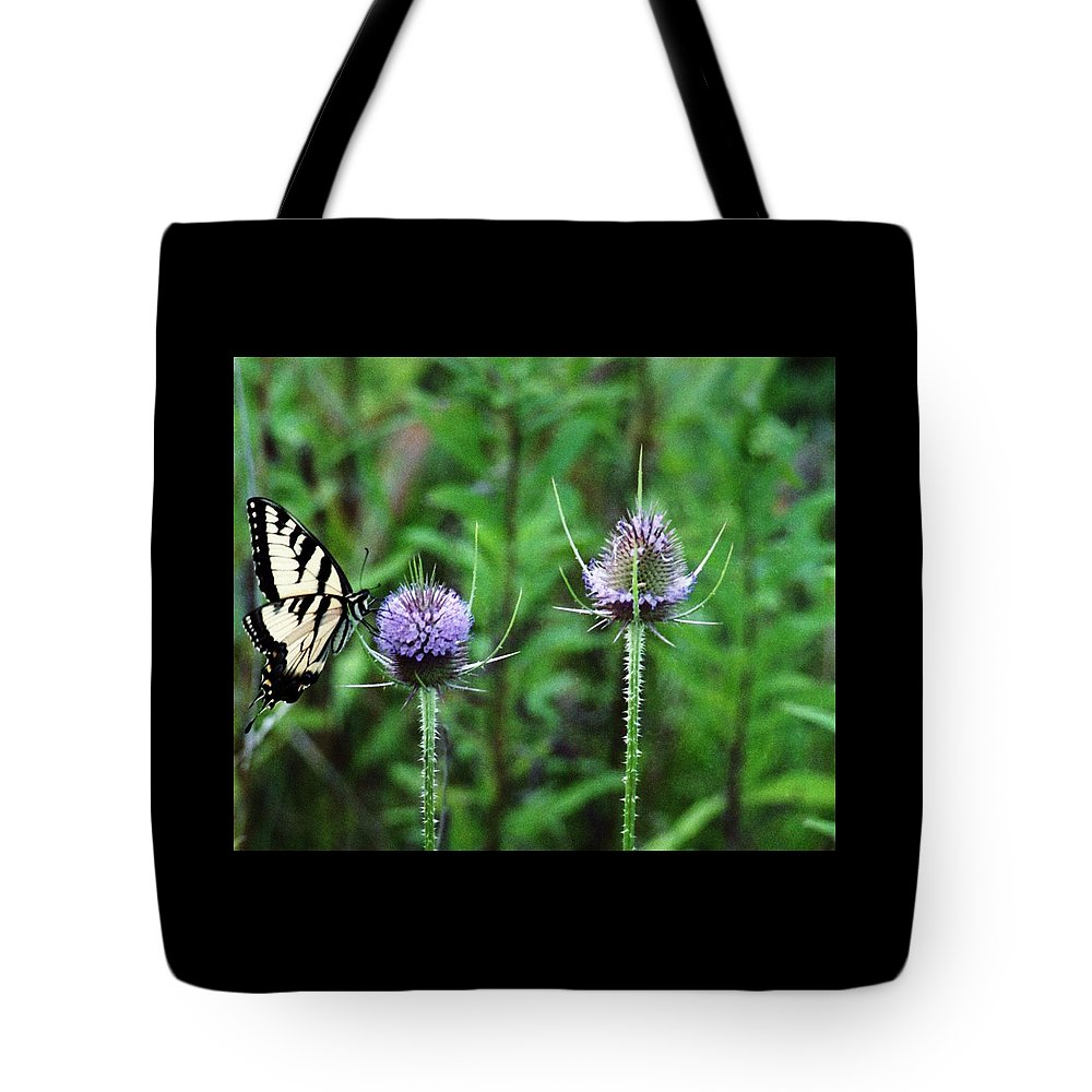 Butterfly Tote Bag featuring the photograph 072206-2 by Mike Davis