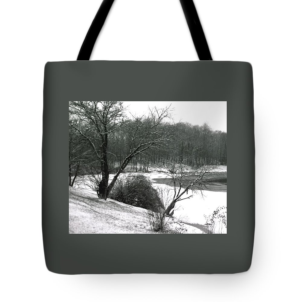 Scenic Tote Bag featuring the photograph 072606-24a by Mike Davis