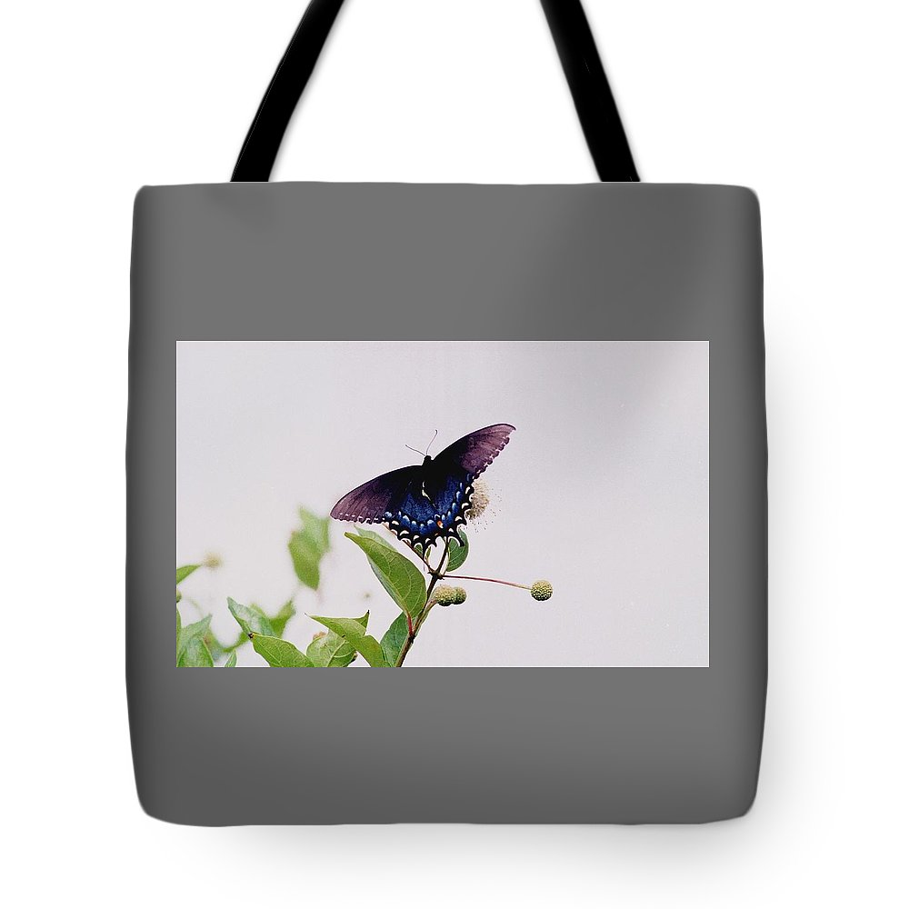 Butterfly Tote Bag featuring the photograph 080706-5 by Mike Davis