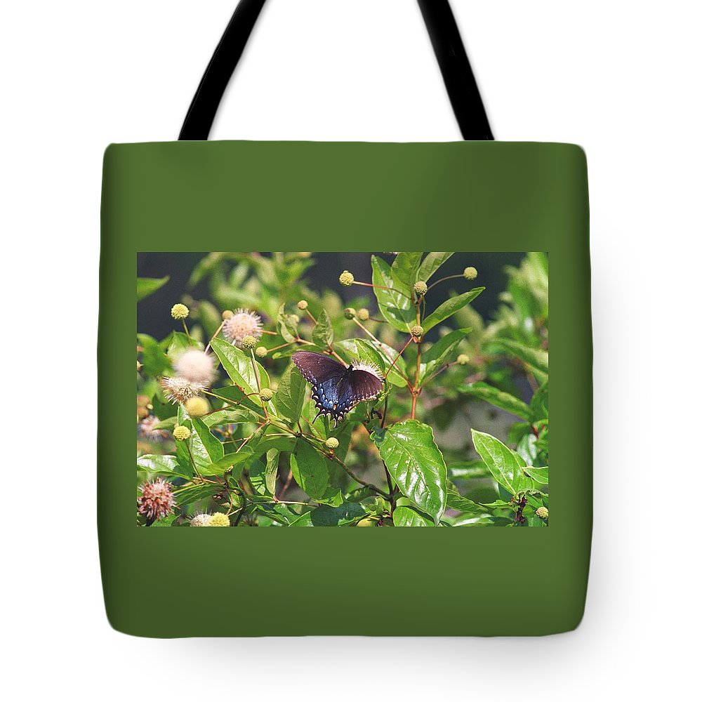 Butterfly Tote Bag featuring the photograph 080706-6 by Mike Davis