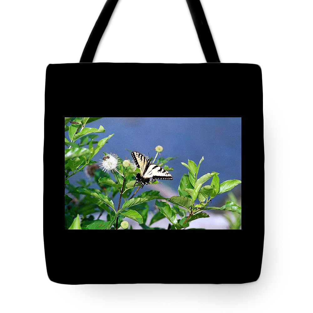 Butterfly Tote Bag featuring the photograph 080706-7 by Mike Davis