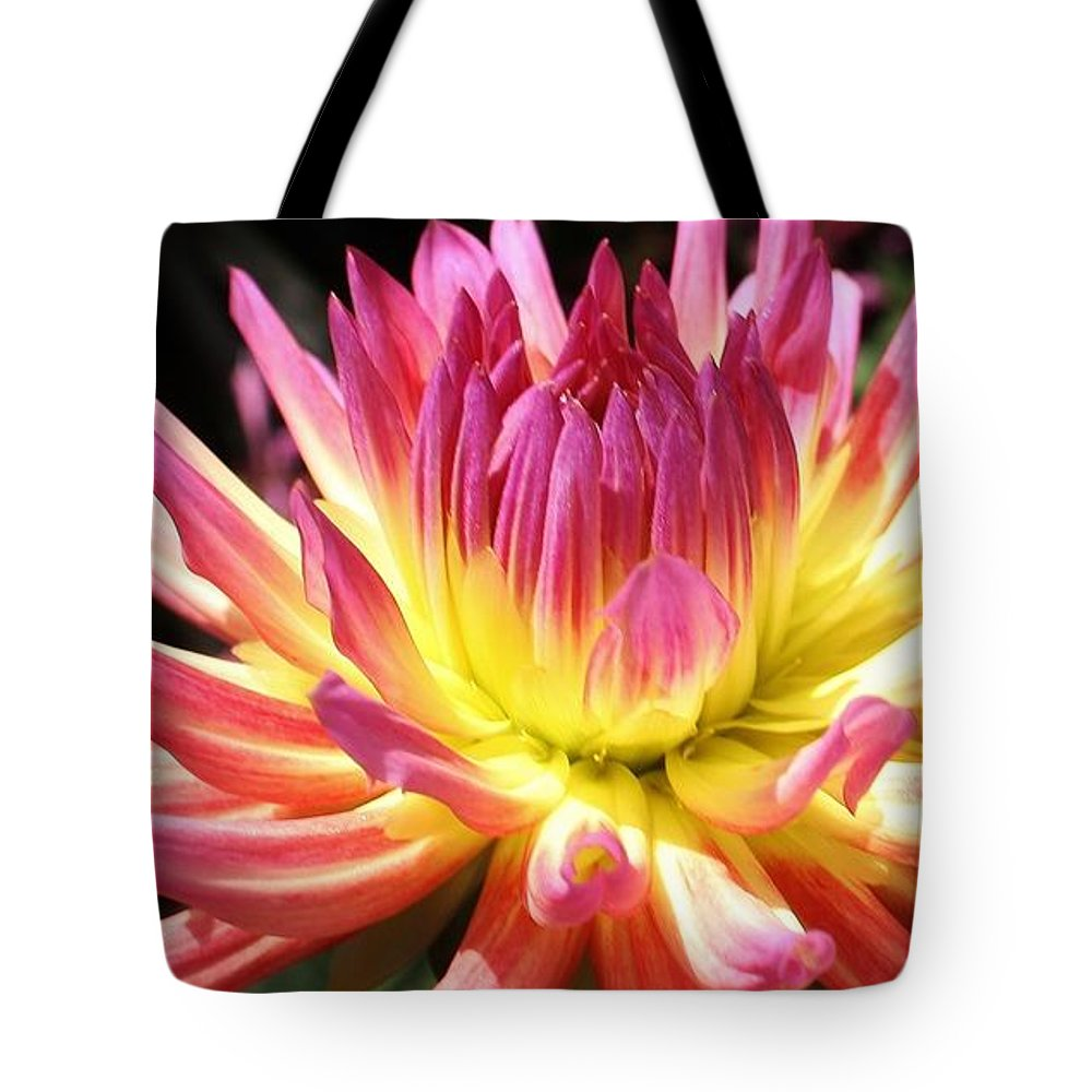 Nature Tote Bag featuring the photograph A Burst Of Color by Bruce Bley