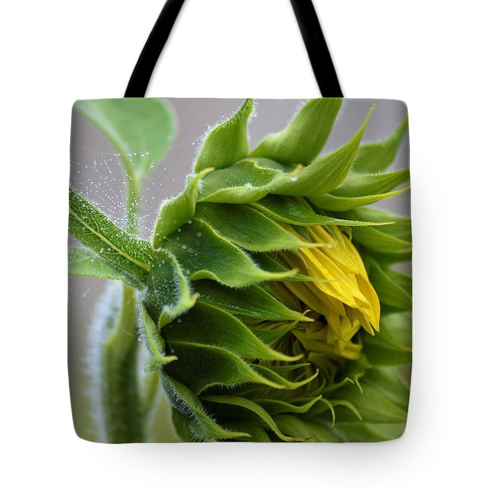 Sunflowers Tote Bag featuring the photograph A Dewy Morning by Jewels Blake Hamrick