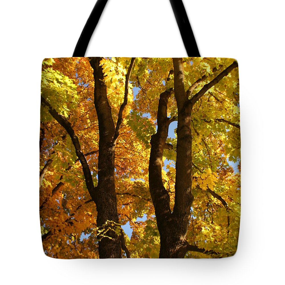 Achieve Tote Bag featuring the photograph Achievement by Idaho Scenic Images Linda Lantzy