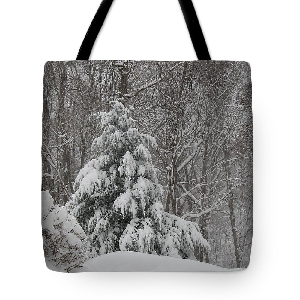 Landscape Tote Bag featuring the photograph After The Snow by Sandra Bourret