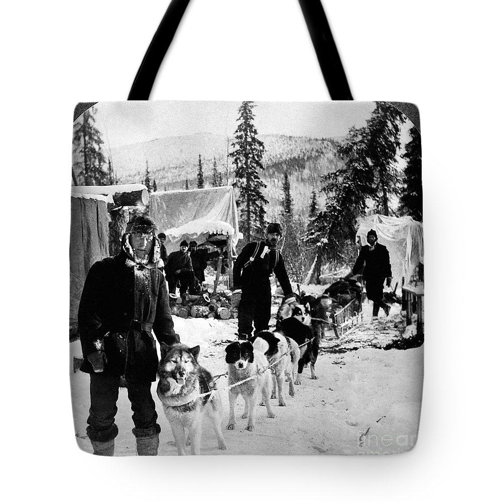 1900 Tote Bag featuring the photograph Alaskan Dog Sled, C1900 by Granger
