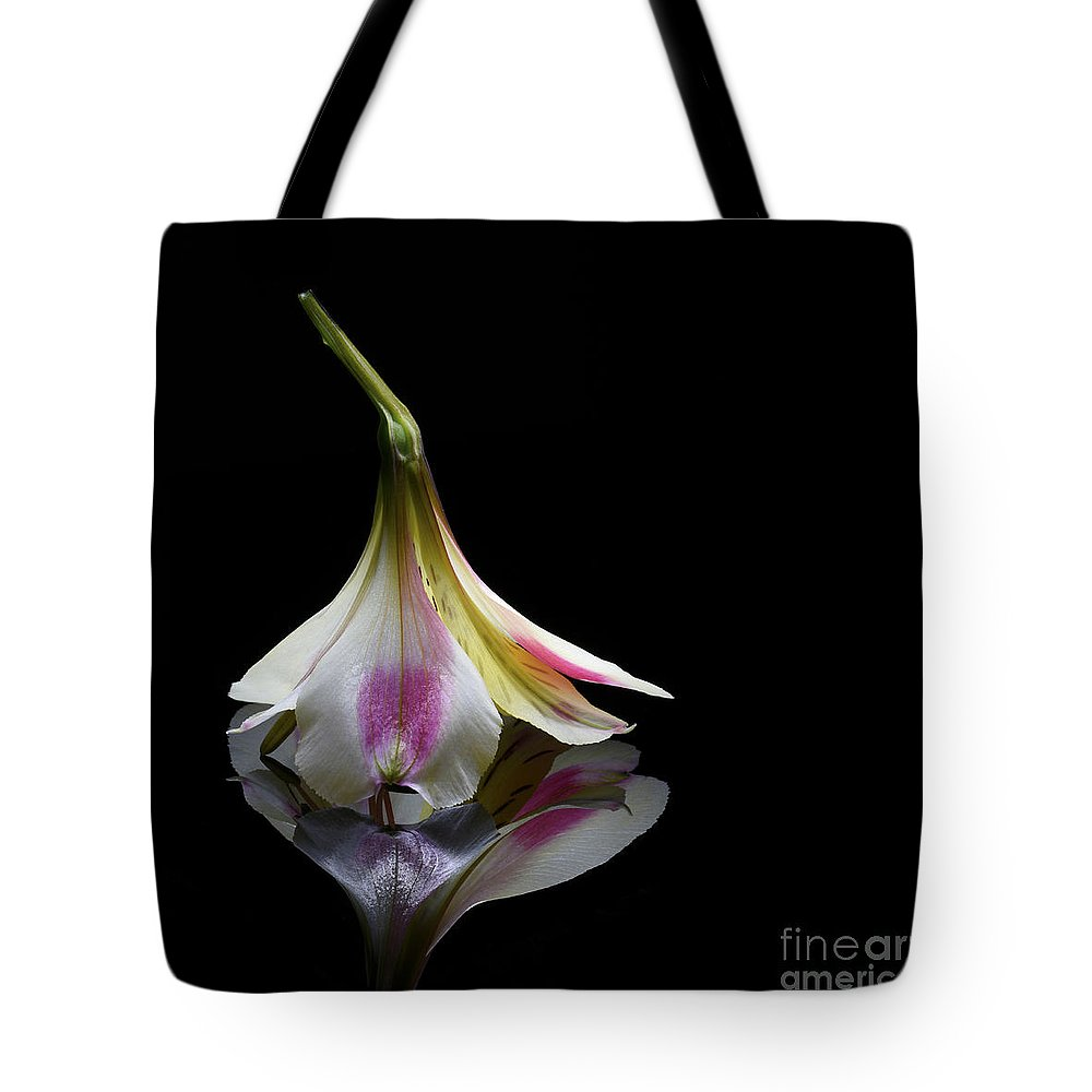Alstroemeria Tote Bag featuring the photograph Alstroemeria Blossom by Stela Knezevic