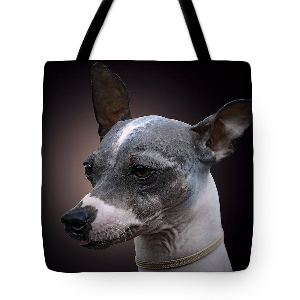 American Hairlessterrier Tote Bag featuring the photograph American Hairlessterrier by Alexey Bazhan