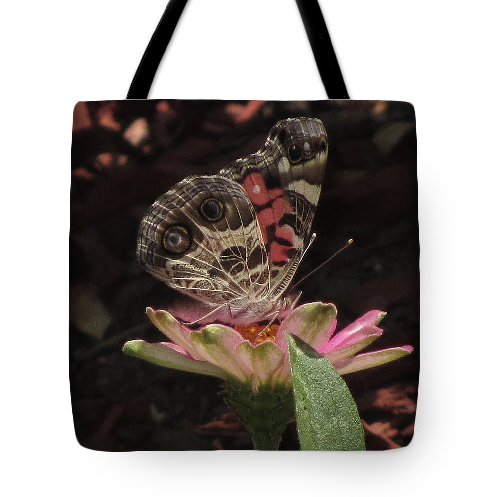 Insect Tote Bag featuring the photograph American Painted Lady by Donna Brown