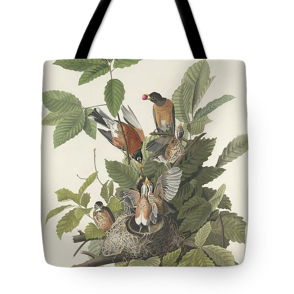Audubon Tote Bag featuring the drawing American Robin by Dreyer Wildlife Print Collections