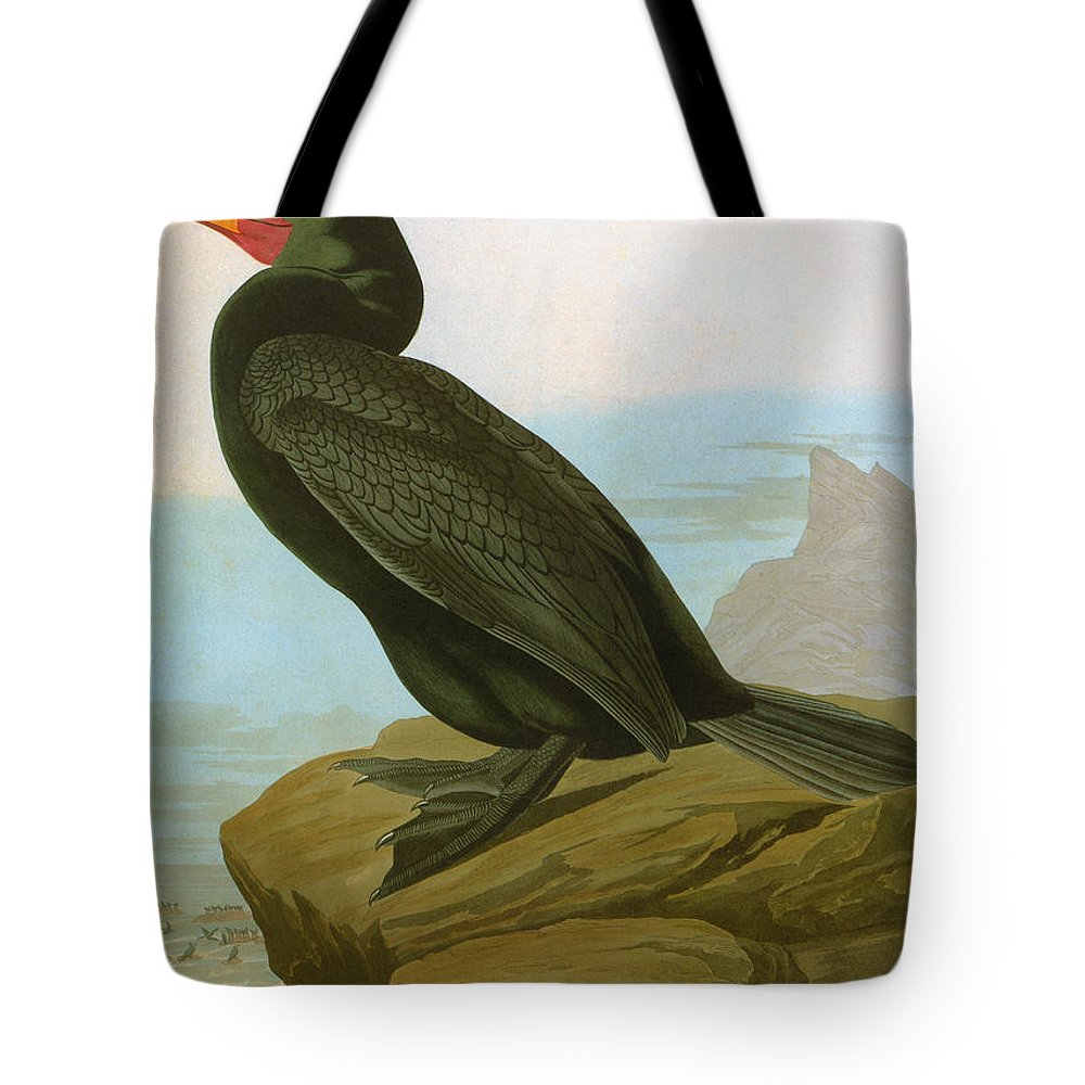 1838 Tote Bag featuring the photograph Audubon: Cormorant by Granger