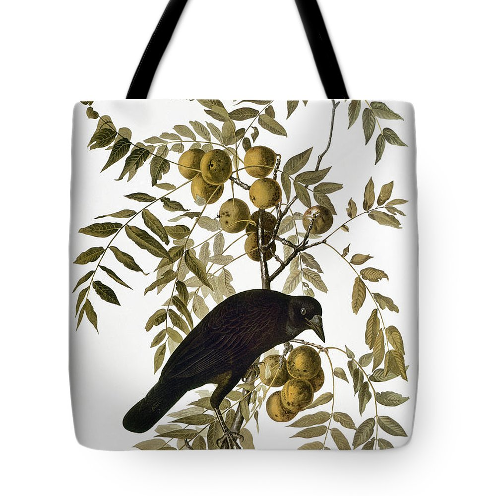 1838 Tote Bag featuring the photograph Audubon: Crow by Granger