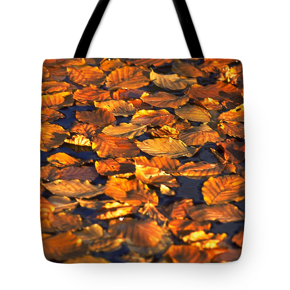 Leaves Tote Bag featuring the photograph Autumn Leaves by Michael Mogensen