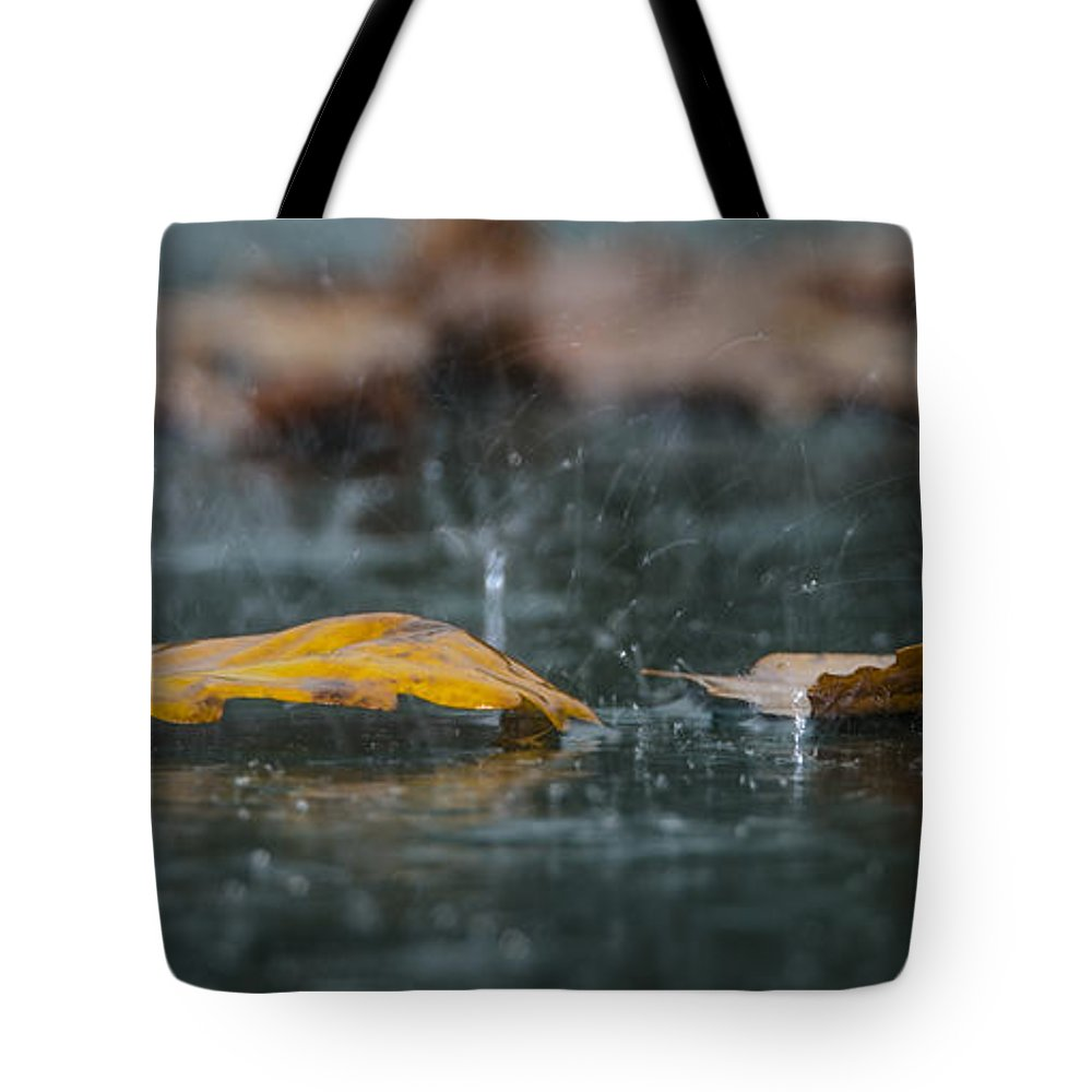 Autumn Tote Bag featuring the photograph Autumn Rain by Shay Weiss