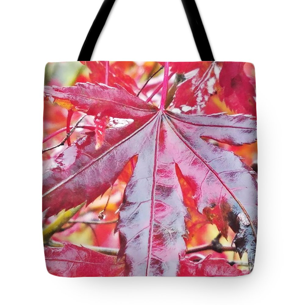 Autumn Red Tote Bag featuring the photograph Autumn Red by Maria Urso