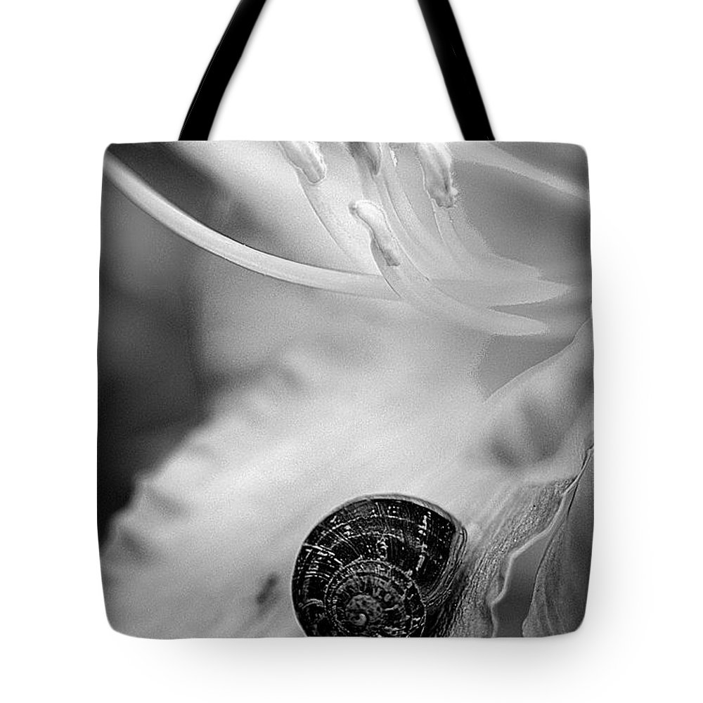 Clay Tote Bag featuring the photograph B And White Floral With Snail by Clayton Bruster