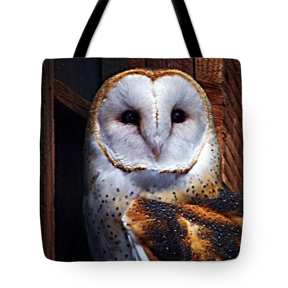 Digital Painting Tote Bag featuring the photograph Barn Owl by Anthony Jones