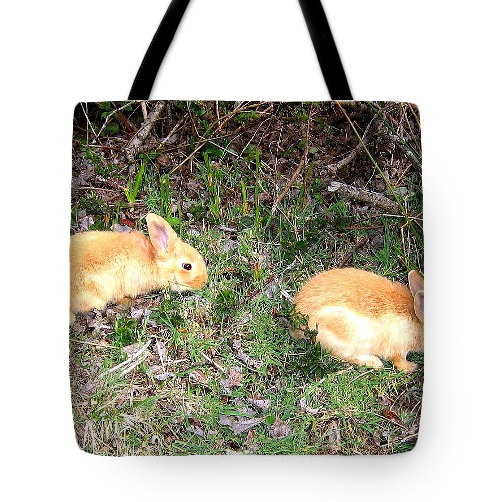 Rabbits Tote Bag featuring the photograph Beach Buddies by Will Borden