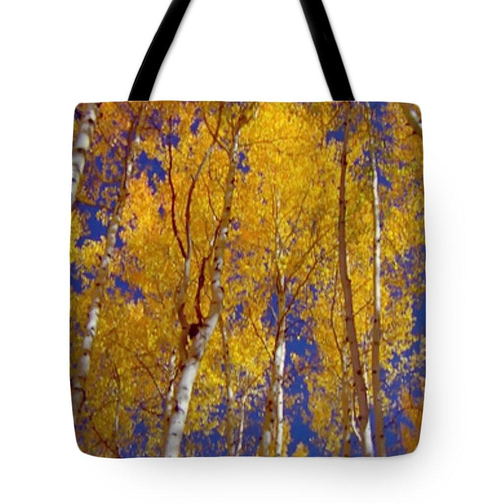 Seasons Tote Bag featuring the mixed media Beautiful Fall Season Nature Renews Itself Theme Green Trees Reaching For The Sky Save The Environ by Navin Joshi