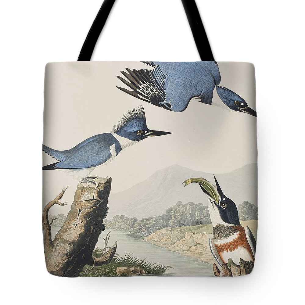 Belted Kingfisher Tote Bag featuring the painting Belted Kingfisher by John James Audubon