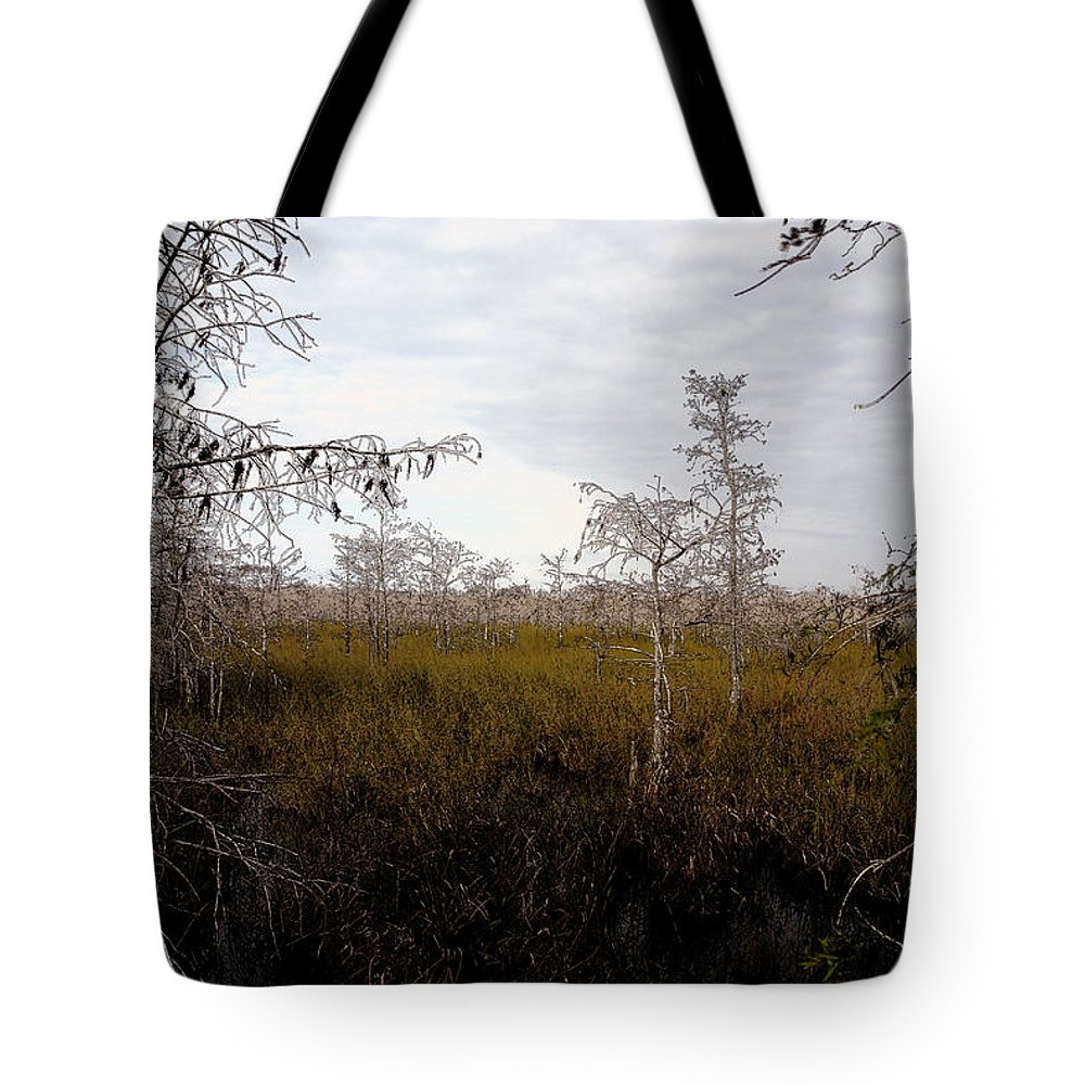Big Cypress National Preserve Tote Bag featuring the painting Big Cypress by David Lee Thompson