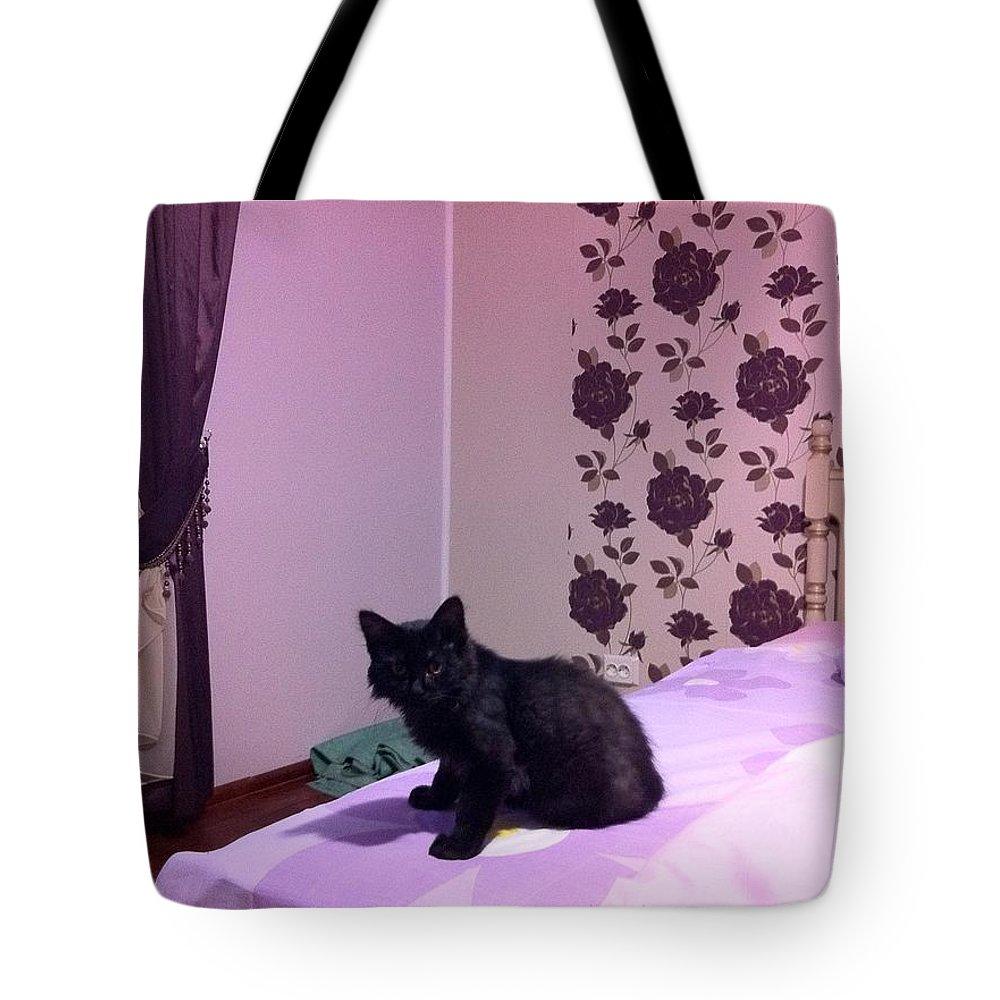 Tote Bag featuring the photograph Black Cat by Daniela Buciu
