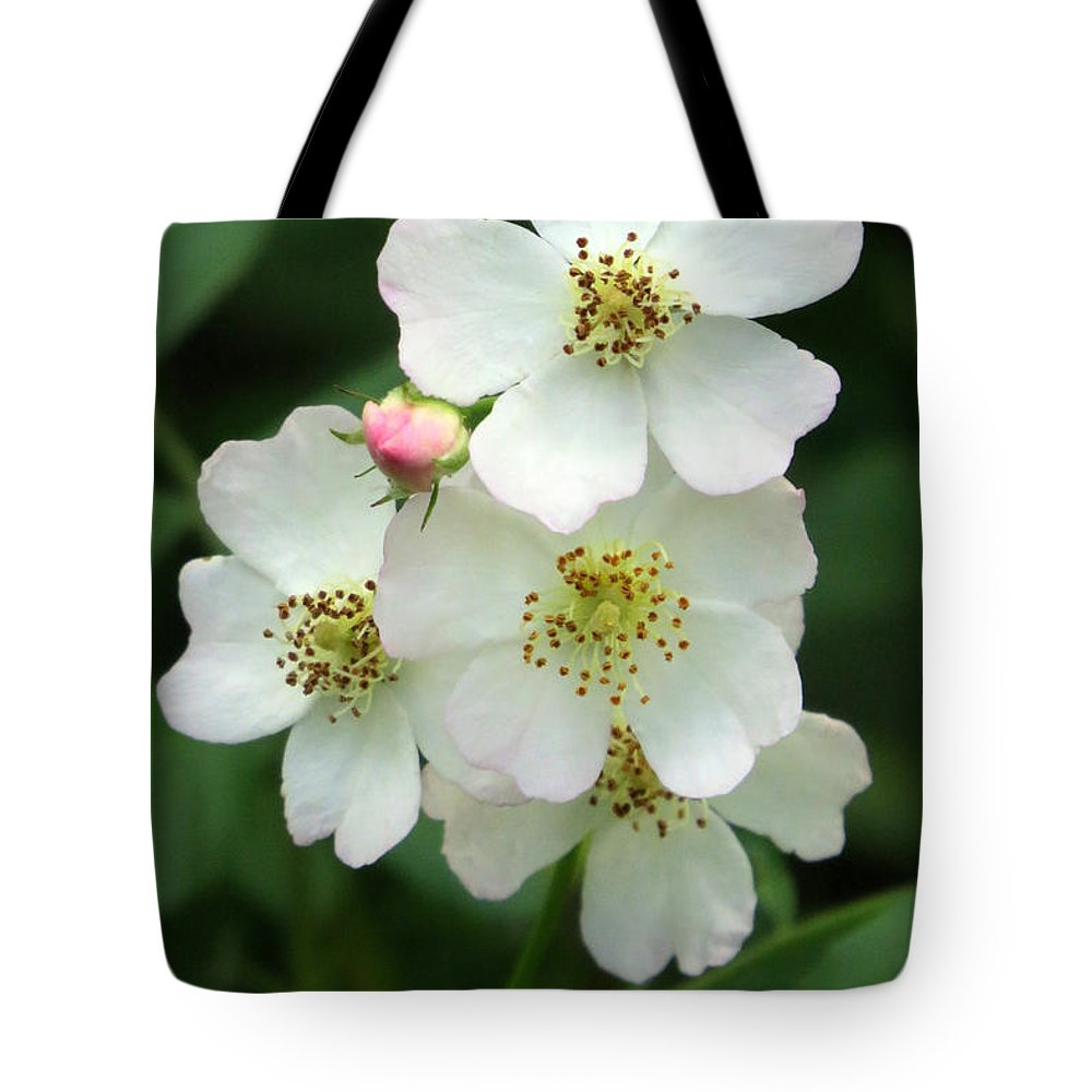 Flower Tote Bag featuring the photograph Blackberry Blossoms by Frank Townsley