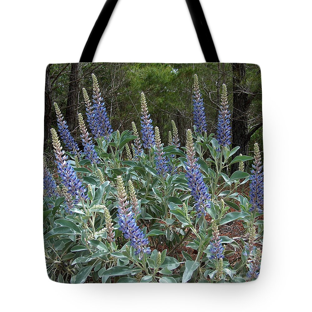 Lupine Tote Bag featuring the photograph Blue Lupine by Racquel Morgan