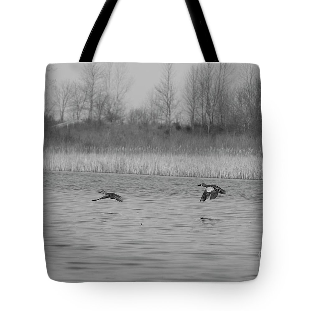 Bong Recreation Area Tote Bag featuring the photograph Blue Wing Teal Pair by Randall Saltys