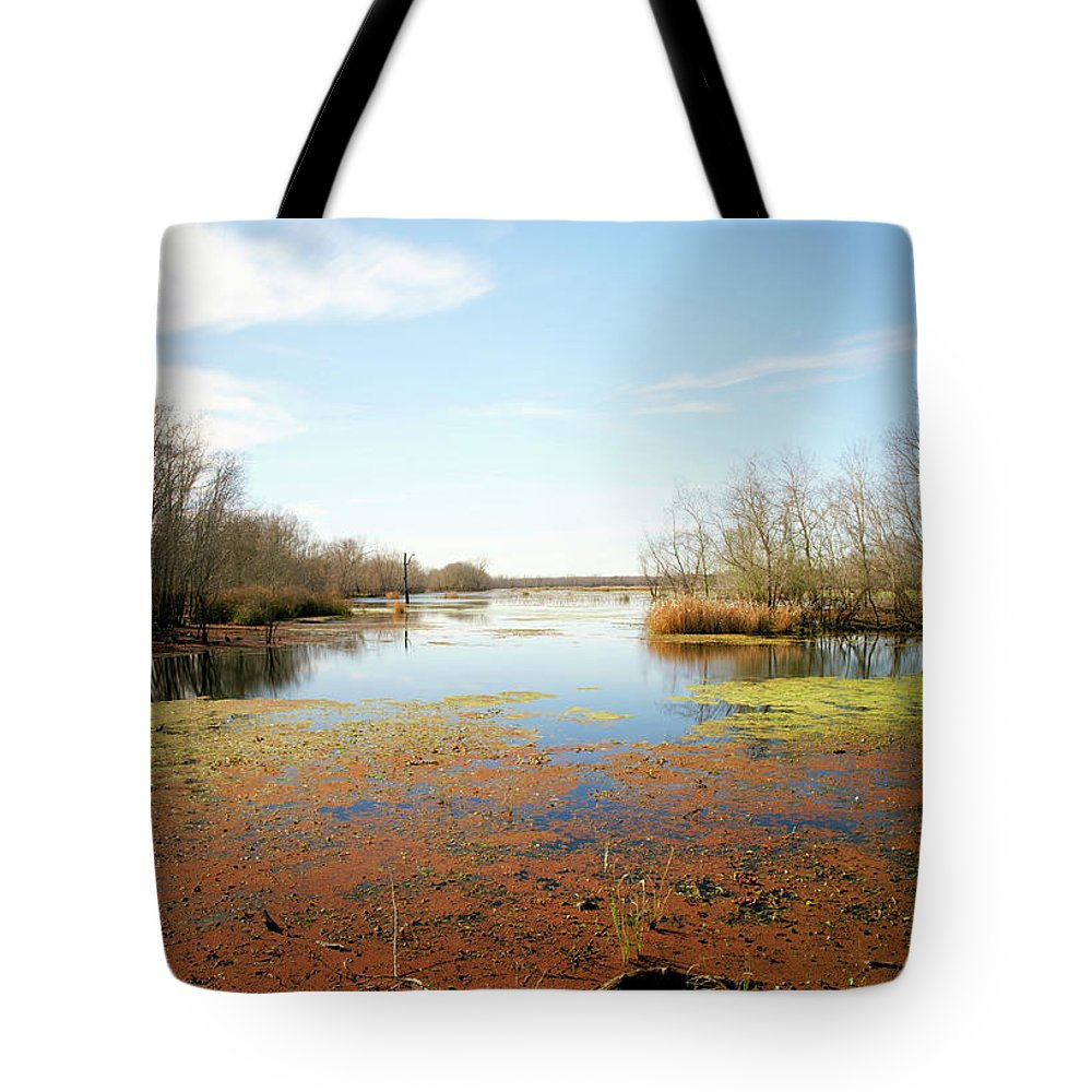 Texas Park Tote Bag featuring the photograph Brazos Bend Winter Wetland by Katrina Lau