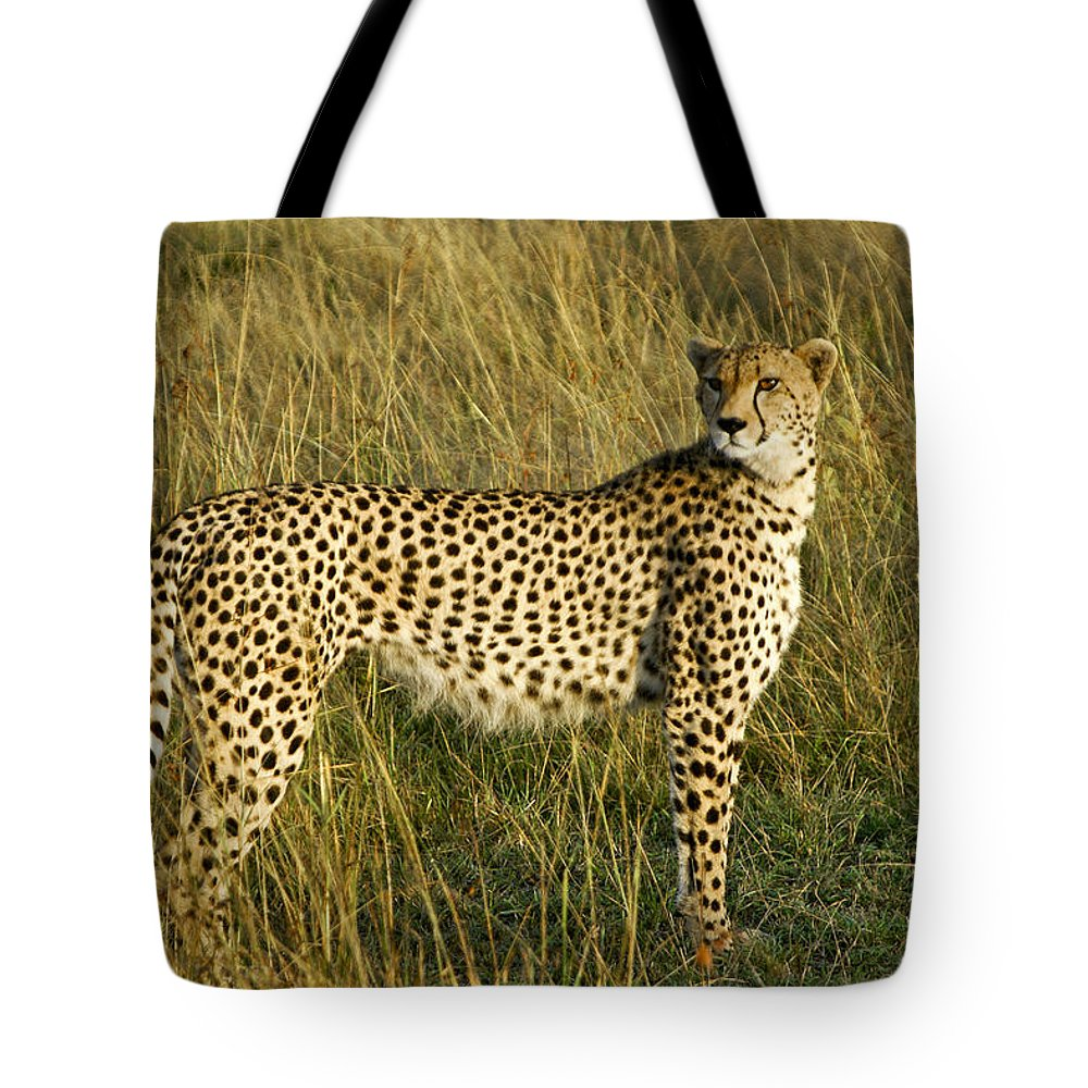 Africa Tote Bag featuring the photograph Built For Speed by Michele Burgess