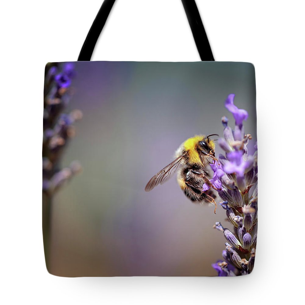 Lavender Tote Bag featuring the photograph Bumblebee and Lavender by Nailia Schwarz