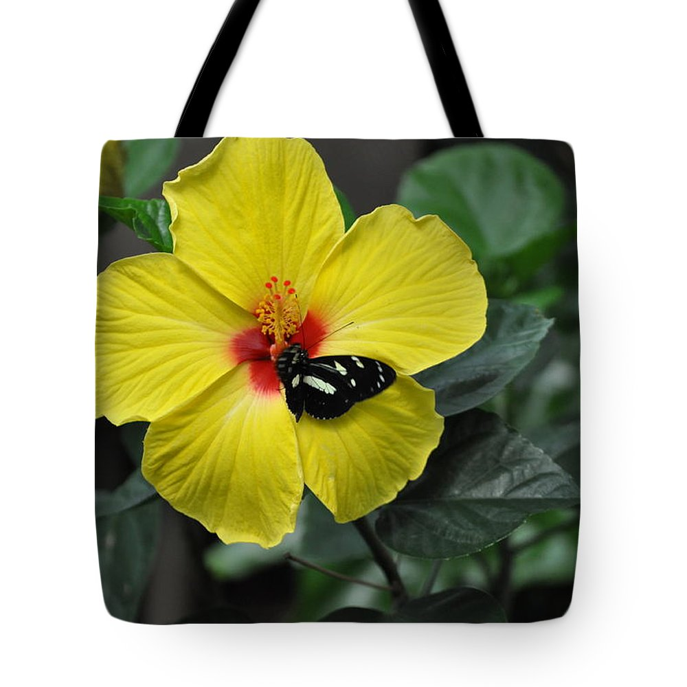 Butterflies Tote Bag featuring the photograph Butterflies Are Blooming 25 by Debra Miller