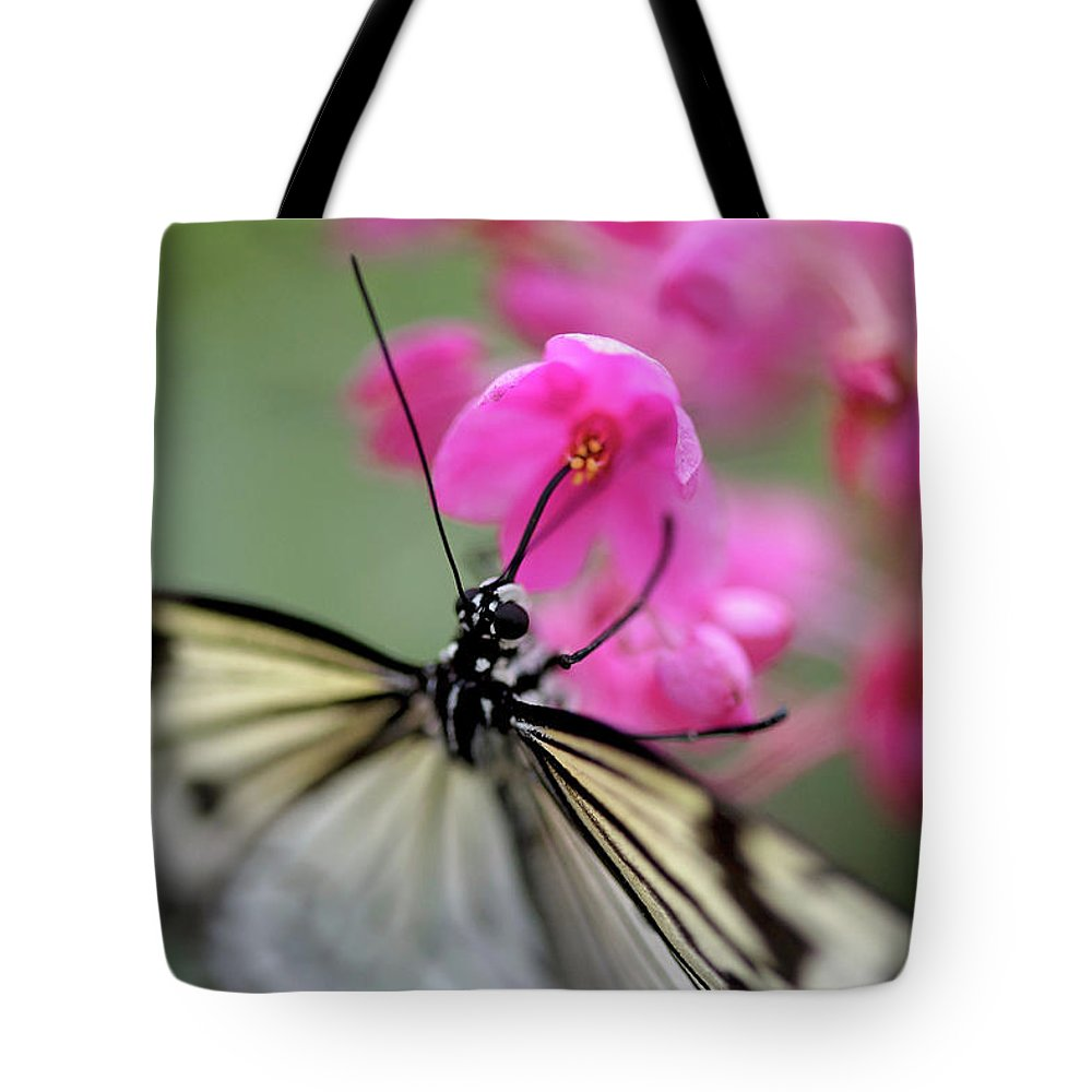 Tote Bag featuring the pyrography Butterfly Garden by Heather Fiedler