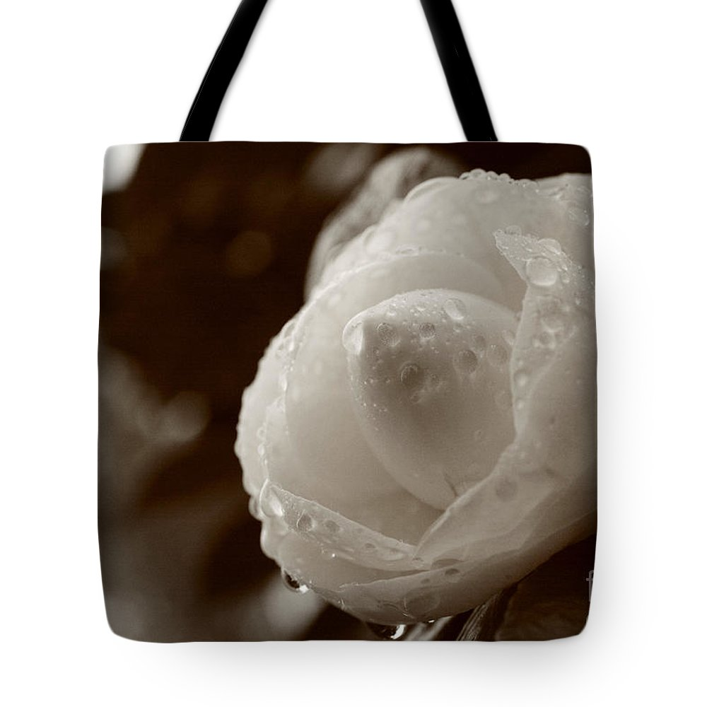 Bloom Tote Bag featuring the photograph Camellia Japonica by Gaspar Avila