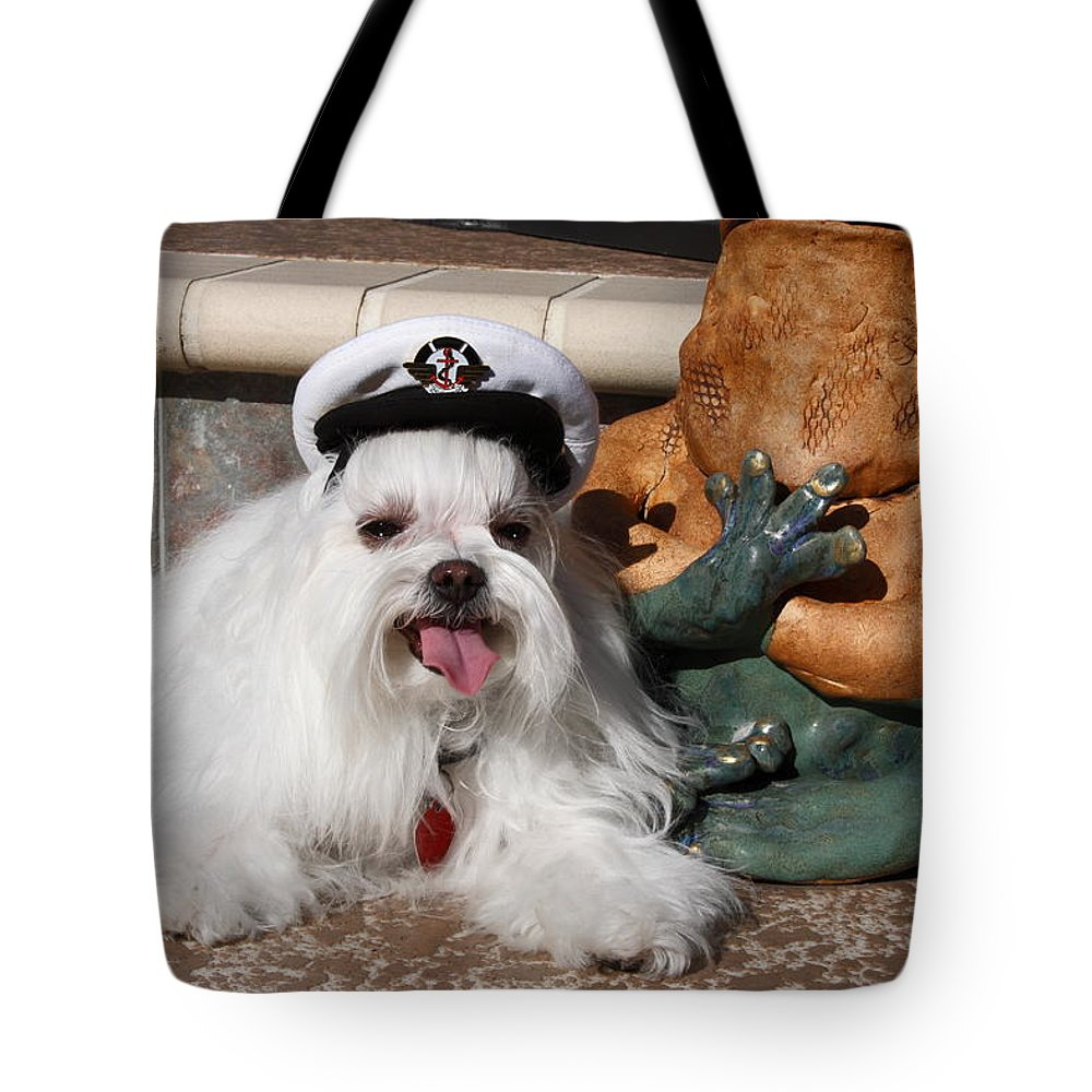 Maltese Dog Beside Ceramic Frog Tote Bag featuring the photograph Captain Maltese Dog by Sally Weigand