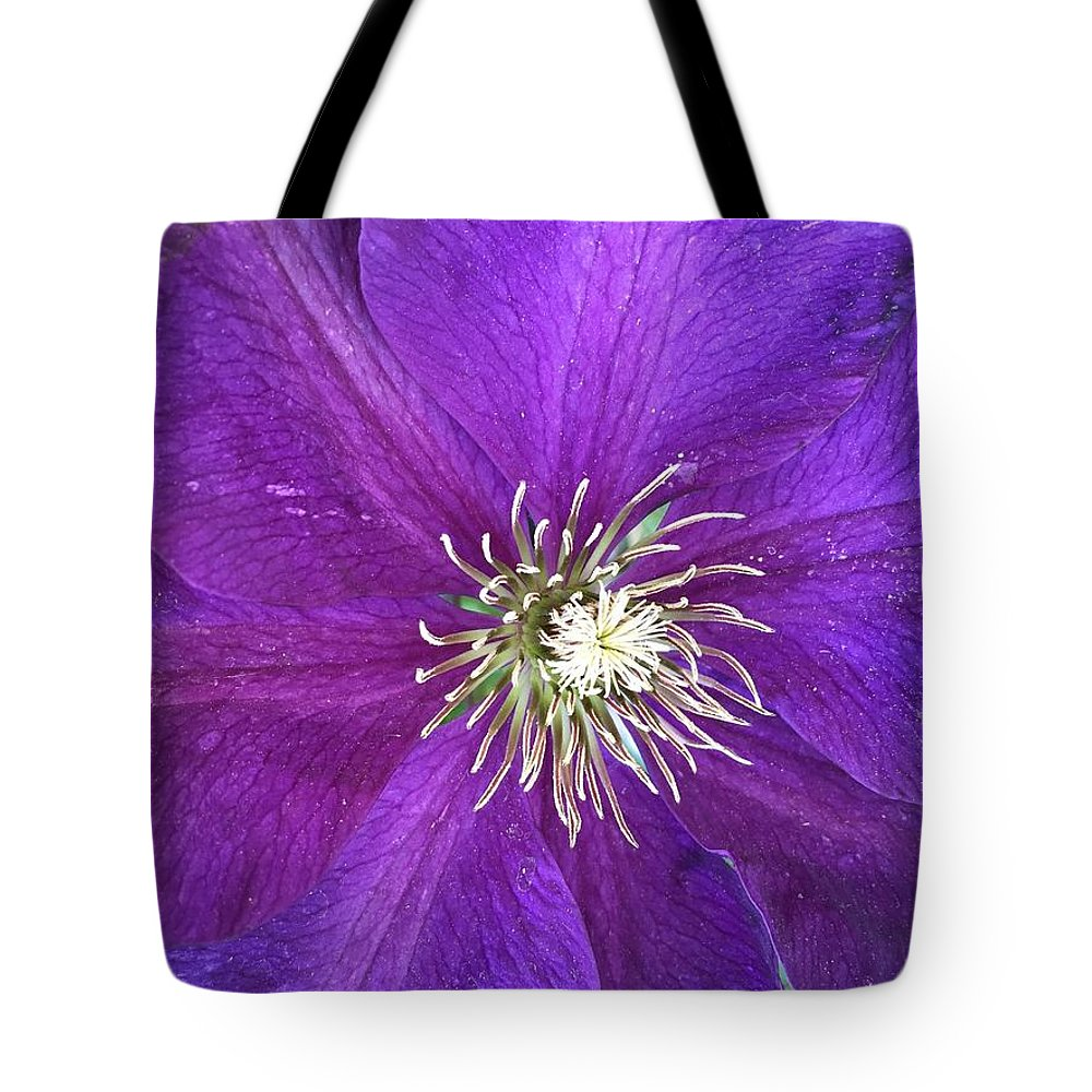 Clarity Tote Bag featuring the photograph Clarity by Shannon Grissom