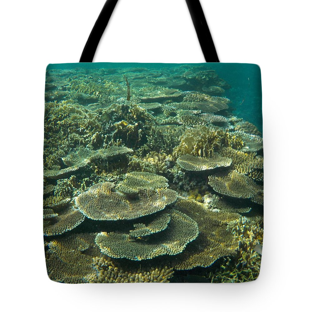 Okinawa Tote Bag featuring the photograph Coral Reef by Minami Daminami