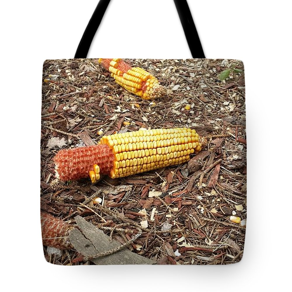 Animals Tote Bag featuring the photograph Critters Delight by Lesley Kiser