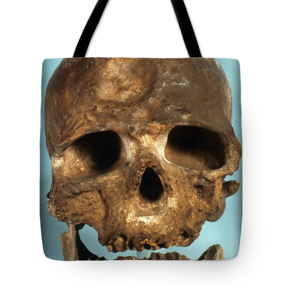 Artifact Tote Bag featuring the photograph Cro-magnon Skull by Granger