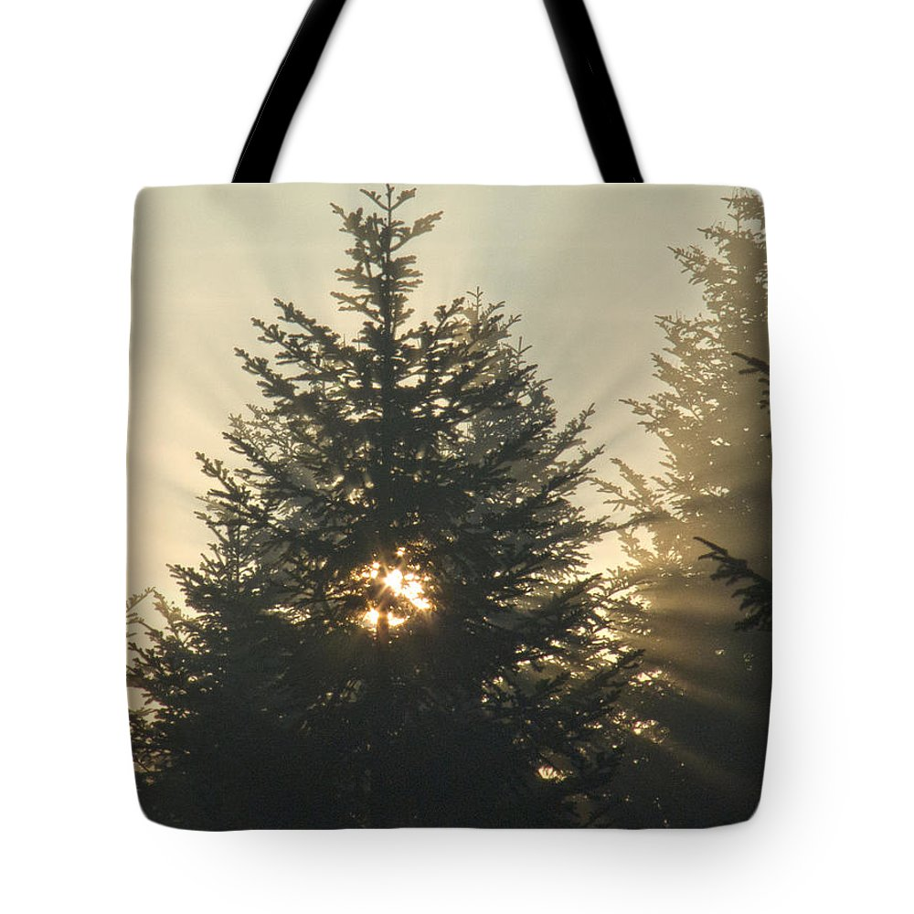 Nature Tote Bag featuring the photograph Dawn by Daniel Csoka