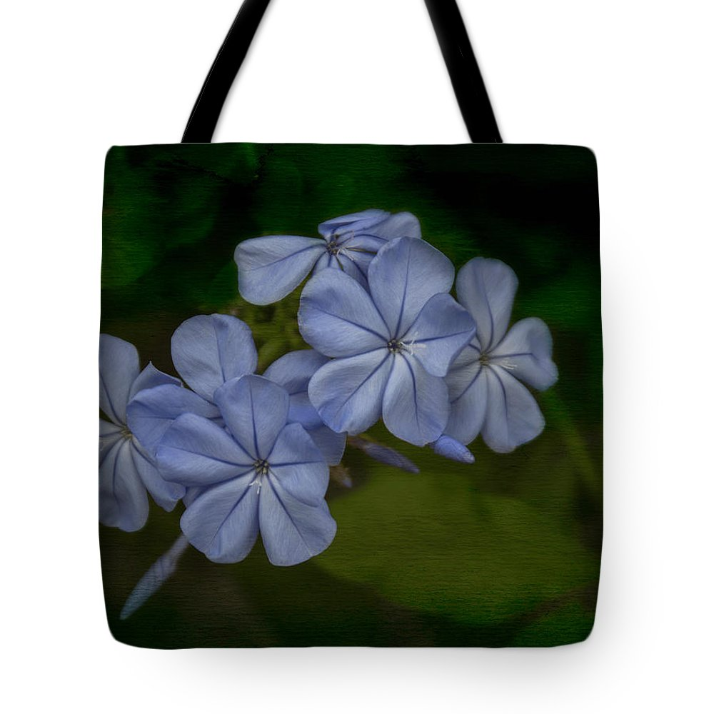 Blue Tote Bag featuring the photograph Delicate by Arlene Carmel