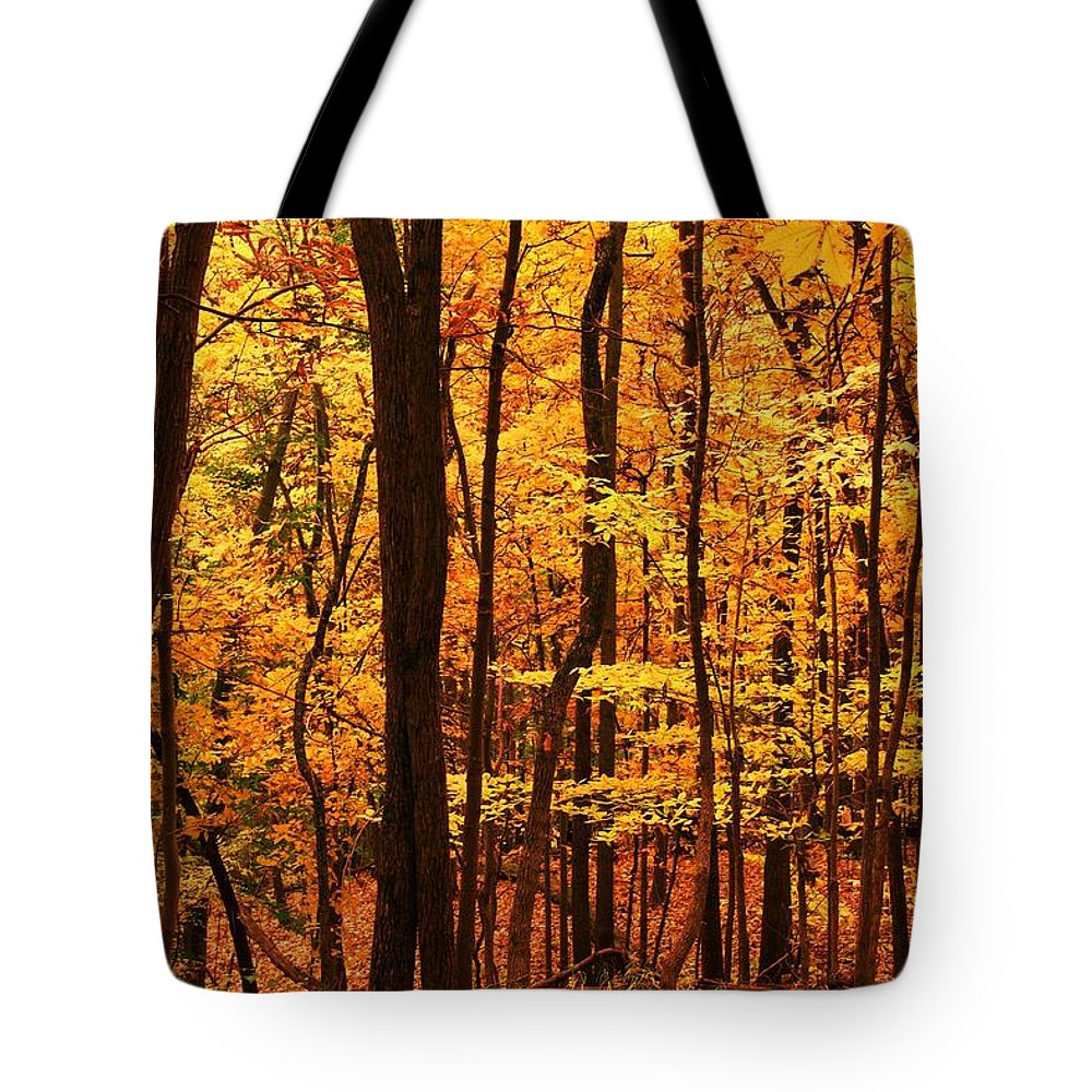 Autumn Tote Bag featuring the photograph Delicious Autumn by Mitch Cat