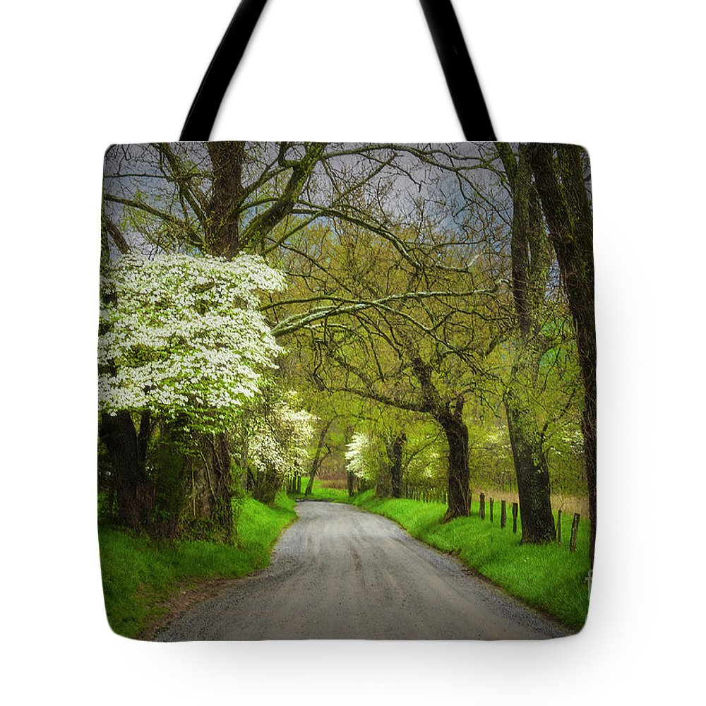 Nature Tote Bag featuring the photograph Dogwood Trail, Smoky Mountain, Tennessee by Stanton Tubb