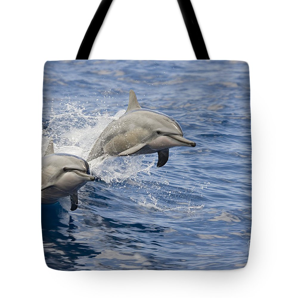 Animal Art Tote Bag featuring the photograph Dolphins Leaping by Dave Fleetham - Printscapes